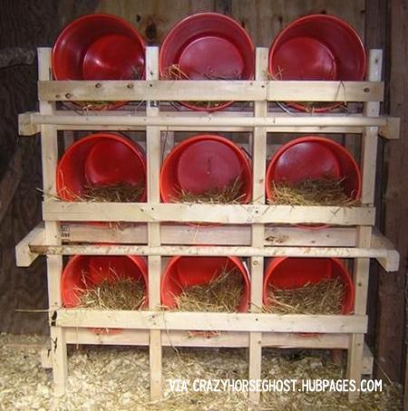 تجهیزات پرورش مرغ بومی / لانه تخمگذاری در پرورش مرغ بومی تخمگذار