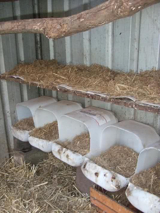تجهیزات پرورش مرغ بومی / لانه تخمگذاری مرغ تخمگذار در پرورش مرغ محلی