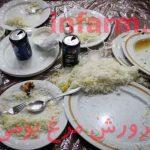 ضایعات رستورانها در تغذیه مرغ بومی