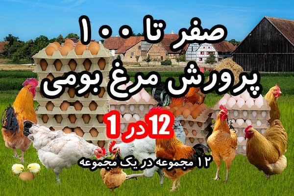 خودآموز پرورش صفر تا 100 مرغ بومی - خودآموز کامل پرورش مرغ بومی