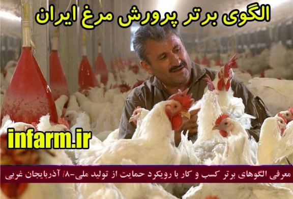 کارآفرینی با پرورش مرغ ، آقای رضا سواری مرغدار میلیاردر