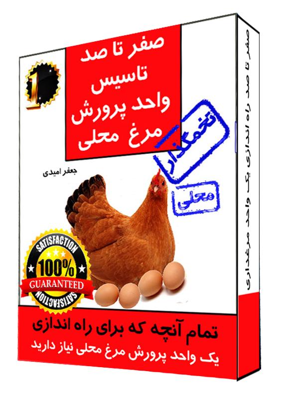 تاسیس یک واحد پرورش مرغ محلی تخمگذار از ابتدا تا انتها